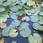 ATSVO__Wasserwerk_160913_05