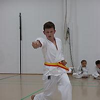 140527_Karate_Pruefung_02